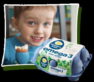 GoldenIrishEggs-omega3